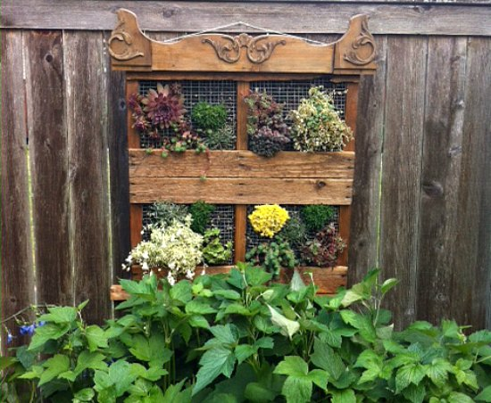 Wood Pallet Garden Ideas with Pictures , One Hundred Dollars