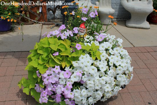 cool container gardens
