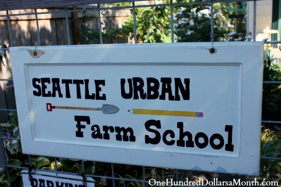 seattle urban farm school
