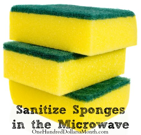 Sanitize Sponges in the Microwave