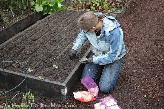 mavis butterfield garden one hundred dollars a month