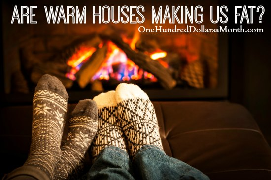 Are Warm Houses Making Us Fat