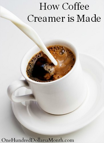 How Coffee Creamer is Made