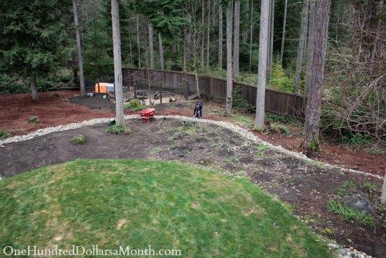 backyard clean up