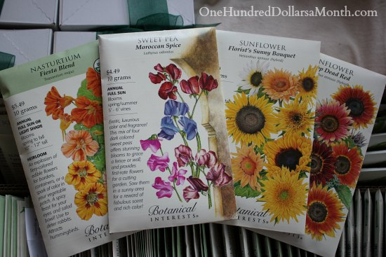 botanical interests flower seeds