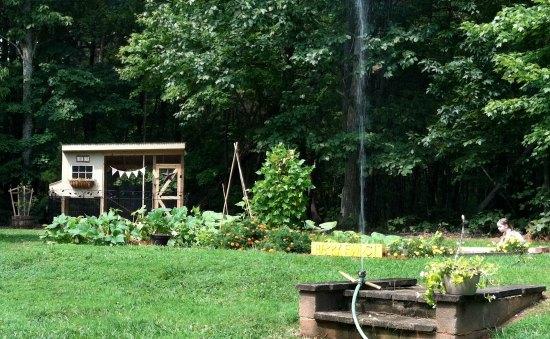 garden photos