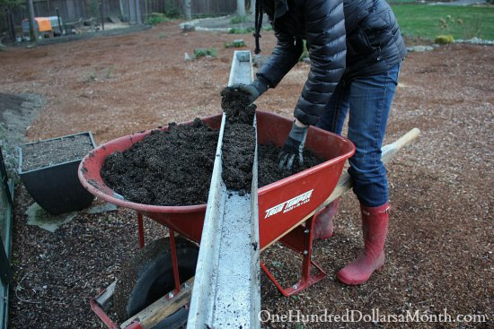 planting in gutters