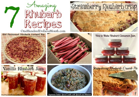 amazing rhubarb recipes
