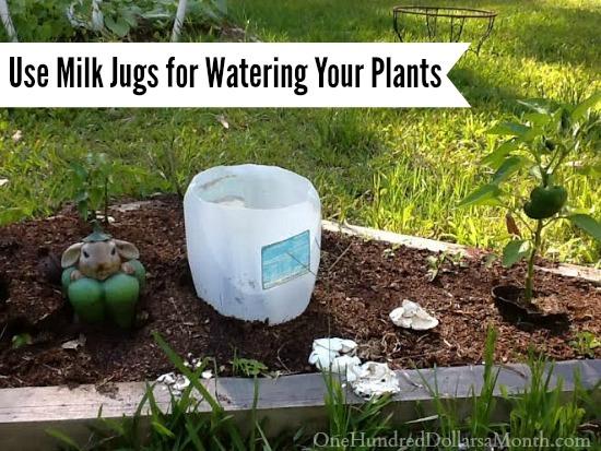 water jugs