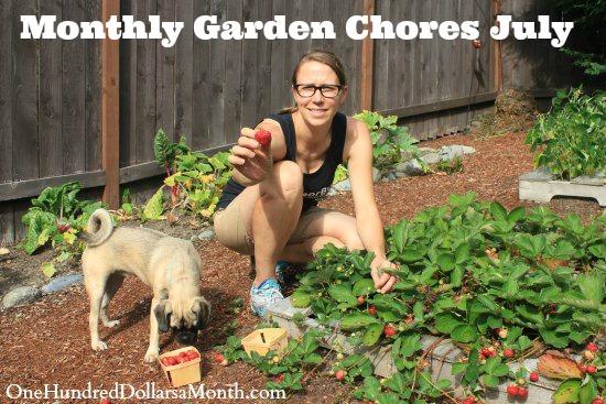Monthly Garden Chores - July