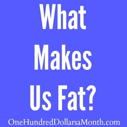 What Makes Us Fat