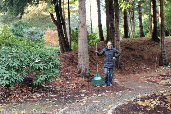 pine tree litter future garden gate