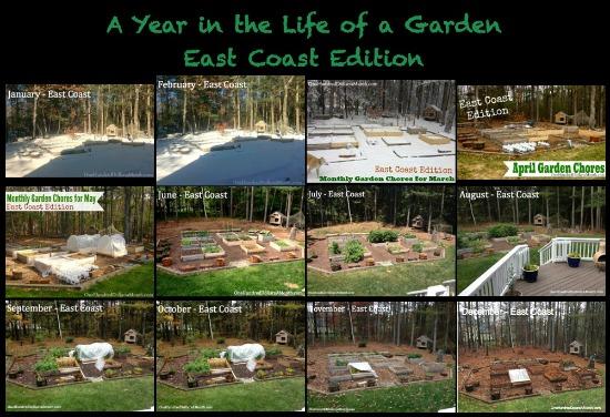 east coast garden pictures
