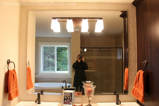 bathroom mirror penny tile background