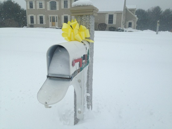 snow in mail box