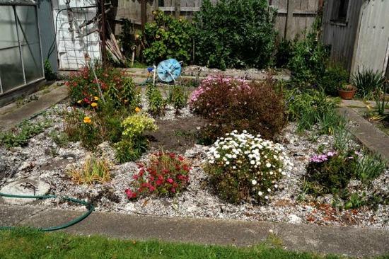 using seewee mulch