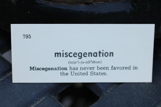 miscegenation