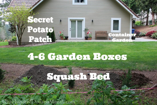 kitchen garden plot