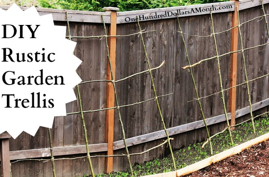 how-to-make-a-pea-bean-trellis1