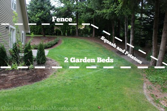 planning a backyard garden