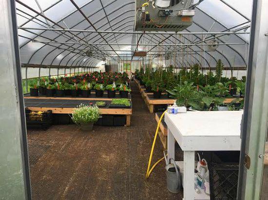 johnnys seeds maine greenhouse photo tour