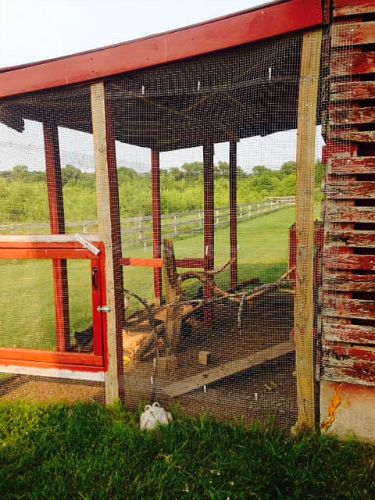 rustic chicken coop red barn