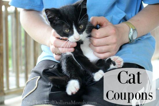 cat coupons