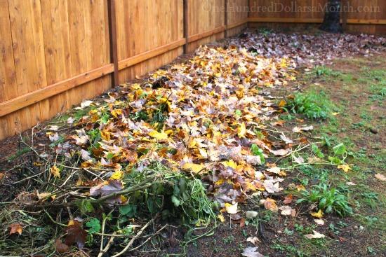 leaves lasagna garden