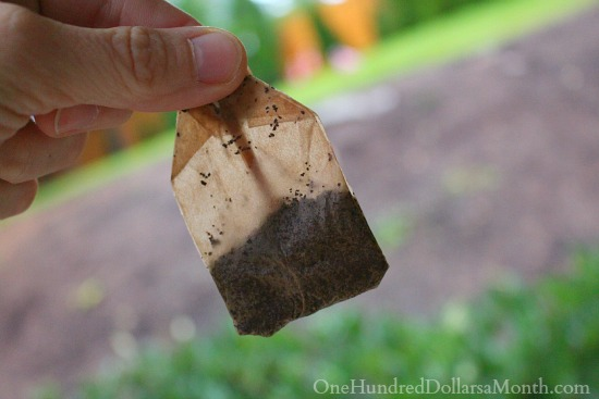 used tea bag