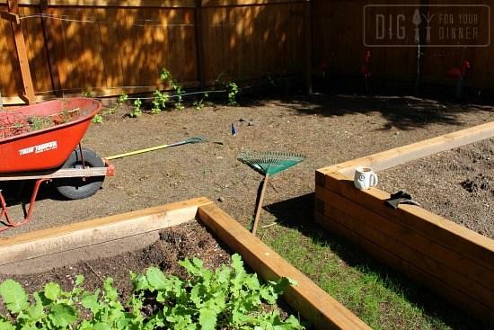 raised-garden-boxes