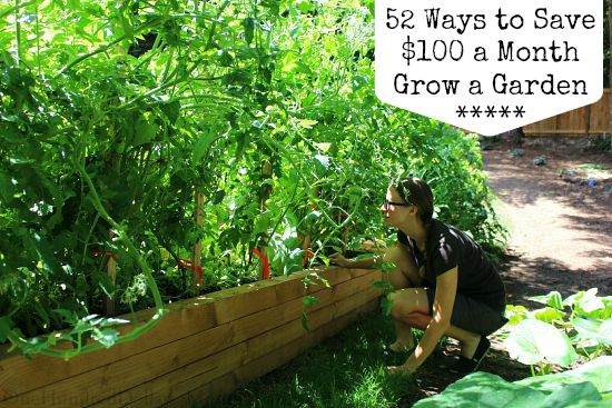 52 Ways to Save $100 a Month Grow a Garden