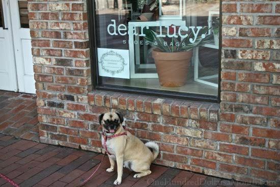 dear lucy store