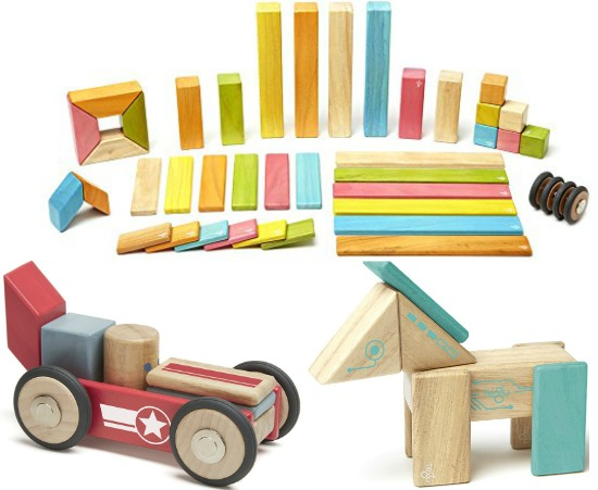 Tegu magnetic wooden toys