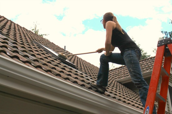 cleaning skylights