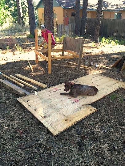 building a chicken coop from scratch