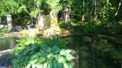 Ponds in the garden
