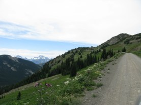 Road near Hart's pass.
