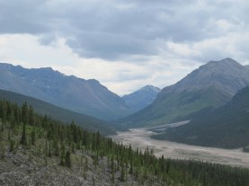 Looking up the valley above Muncho lake.