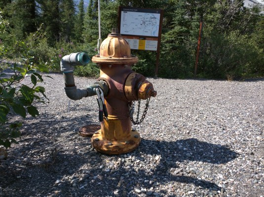 This fire hydrant greeted me at the Wilderness Access Center, the extra fitting seemed to give it a personality and it felt like it was pointing out a recommended direction of travel.