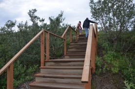 Stairs to the upper trail