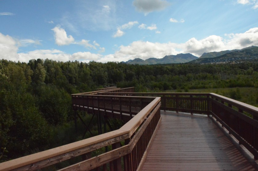 More of the boardwalk. This path ends at a small set of tiered benches arranged as an outdoor classroom.