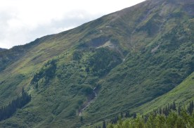 Steep mountain sides covered with green and laced with white waterfalls.