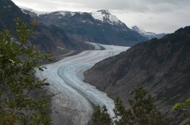 First view of Salmon Glacier (after the bear)
