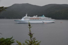 This cruise ship was anchored in Lobster Cove.