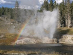 YellowstoneOldFaithful_018