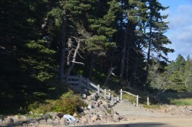 Stairs down to the one sandy beach