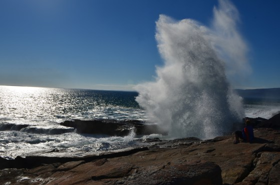 Acadia_041
