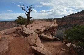 Overlook on the hard rock layer.