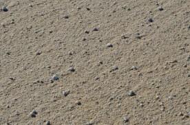Pebbly sand