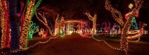 Prairie Lights powered by Gexa Energy